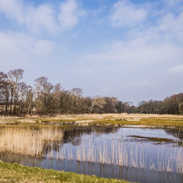 Wandelen-in-Zandvoort-Landgoed-Vogelenzang-Zandvoort-Holiday-Walking-Wander-Urlaub