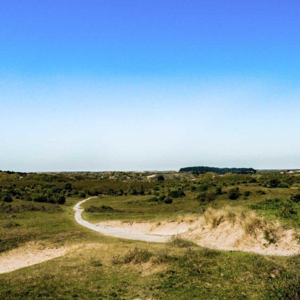 wandelroute-parnassia-bleek-en-berg-zandvoort-holiday
